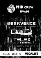Delikvence & The Wilderness (SK) & TELEX tribute