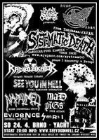 SYSTEMATIC DEATH, RADIOLOKÁTOR, SEE YOU IN HELL, MAD PIGS, NAPALMED, EVIDENCE SMRTI