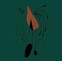 TRUE FIR  | debutová kazeta