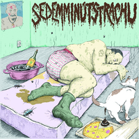 Sedem Minút Strachu / Disleksick | split EP